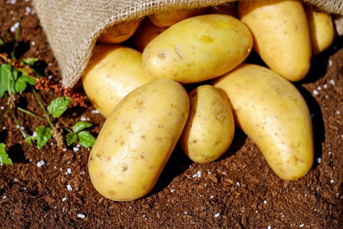Very simple tricks to peel hot potatoes in two minutes without burning your fingers