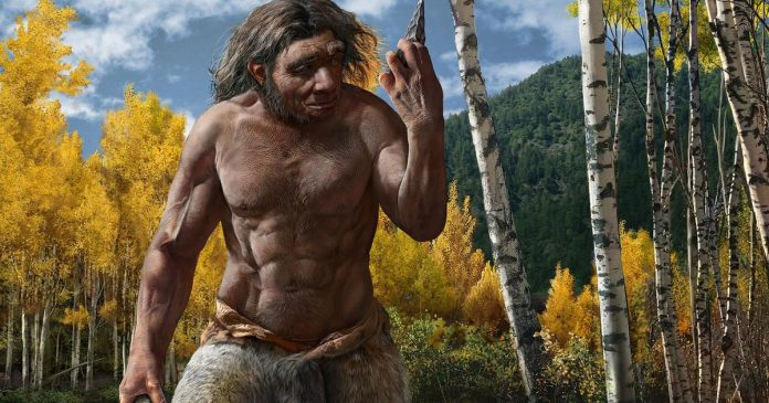 They discovered the skull of 'Dragon Man', a species akin to modern humans - El Financiero