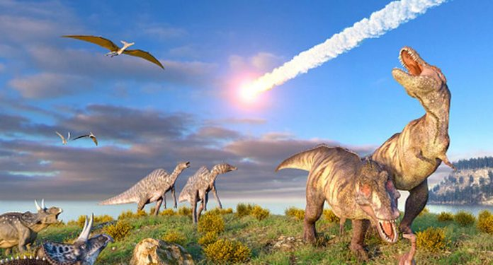 The asteroid that wiped out the dinosaurs came from an unexpected place |  technology