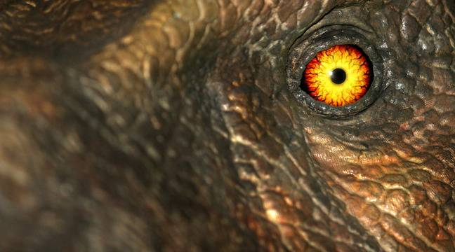 Dinosaurs weren't really in good shape when the meteor hit the Earth