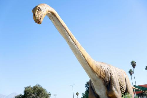 Two new species of dinosaur have been identified in China