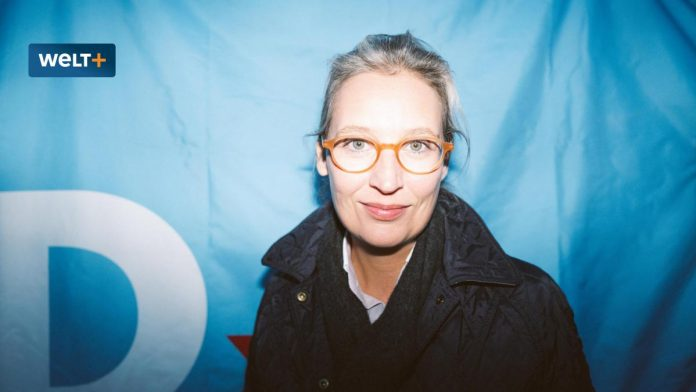 AfD candidate's election campaign: Alice Weidel looks like a winner