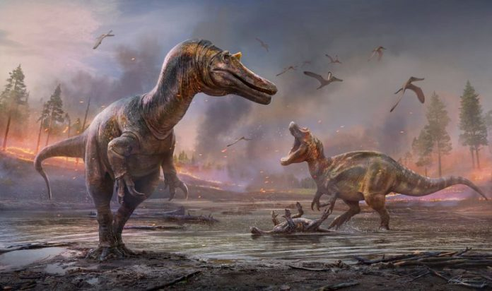 England's Isle of Wight was Isle of Fright, with two big dinosaur predators